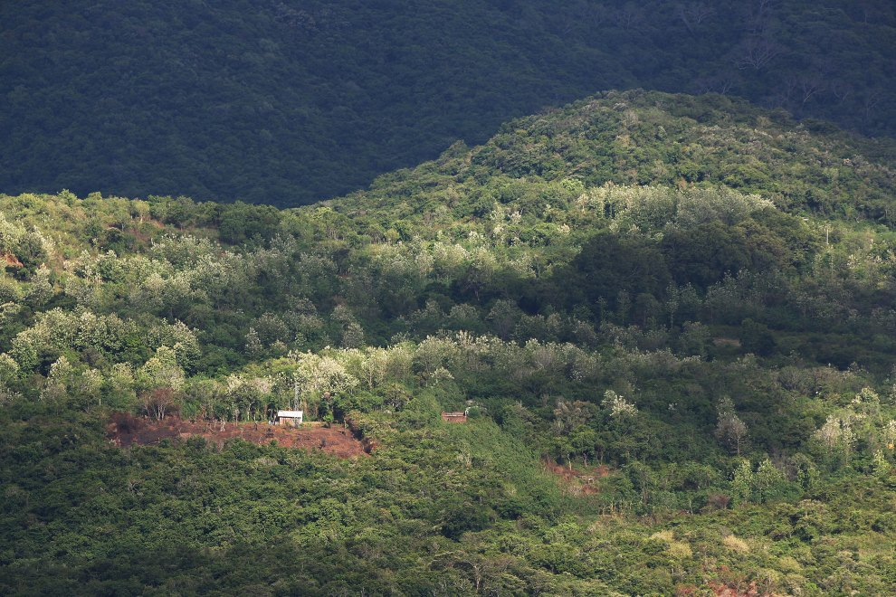 Small scale forest clearance has contributed significantly to the disappearance of vegetation in the central highlands of Sri Lanka.