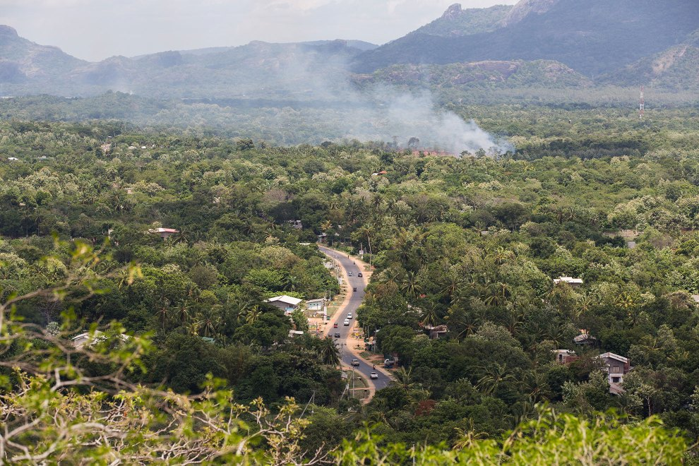 A forest fire burns near a road running through the forests of central Sri Lanka. Small scale forest clearance by farmers contributes to the slow disappearance of the country's forests, as trees are often cleared to make way for farmland.
