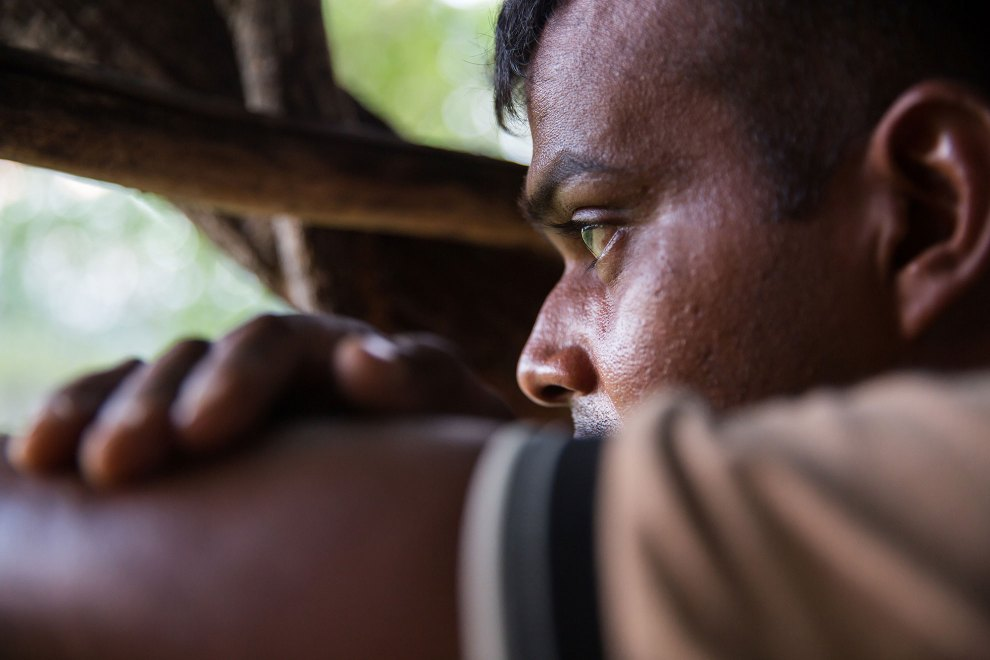 A ranger from the Sri Lankan Wildlife Conservation Society watches for elephants from a treehouse near the Wasgamuwa National Park in central Sri Lanka, famed for its wild Asian elephant populations.