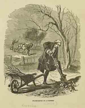 George Washington grew marijuana on his farm