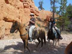 Riding in Red Canyon