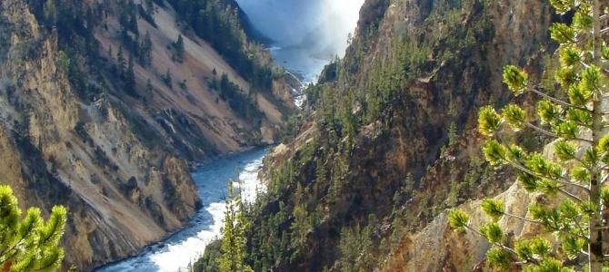 Front country and Back country in Yellowstone National Park