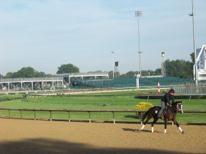 Watch the horses, jockeys and trainers on the track tour at Churchill Downs.