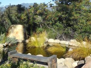 A perfect respite at Meditation Mountain