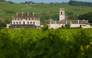 Château de Pommard is located south of Beaune, the heart of Burgundy.