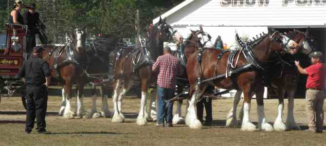 Going to Fryeburg Fair