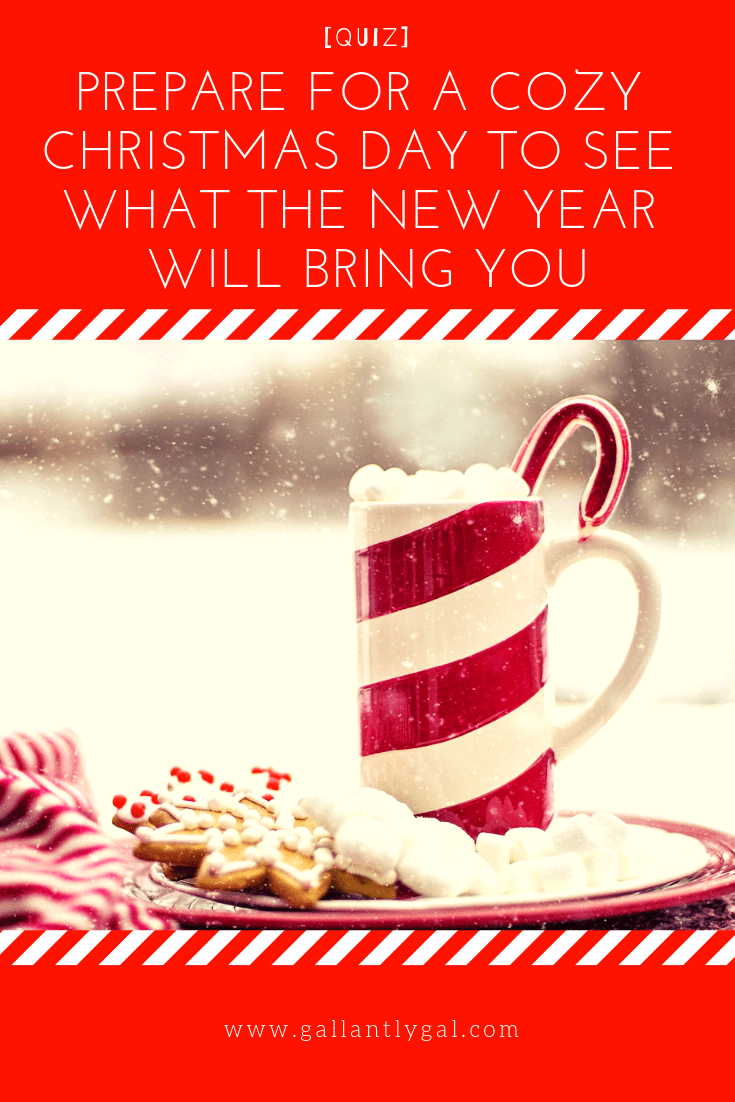[Quiz] Prepare for a cozy Christmas day to see what the new year will bring you