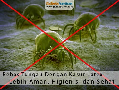 Bebas-Tungau-Bakteri