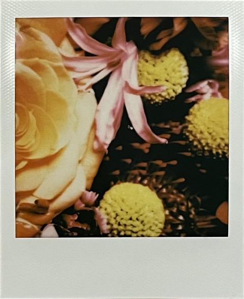 """Carlo Ninchi """"#11""""  - Polaroid, 2020 cm 8,5 x 10.5 pezzo unico firmata sul retro"""
