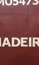 """Madeira"", Carolina Arletti, 150×150 cm, tecnica mista"