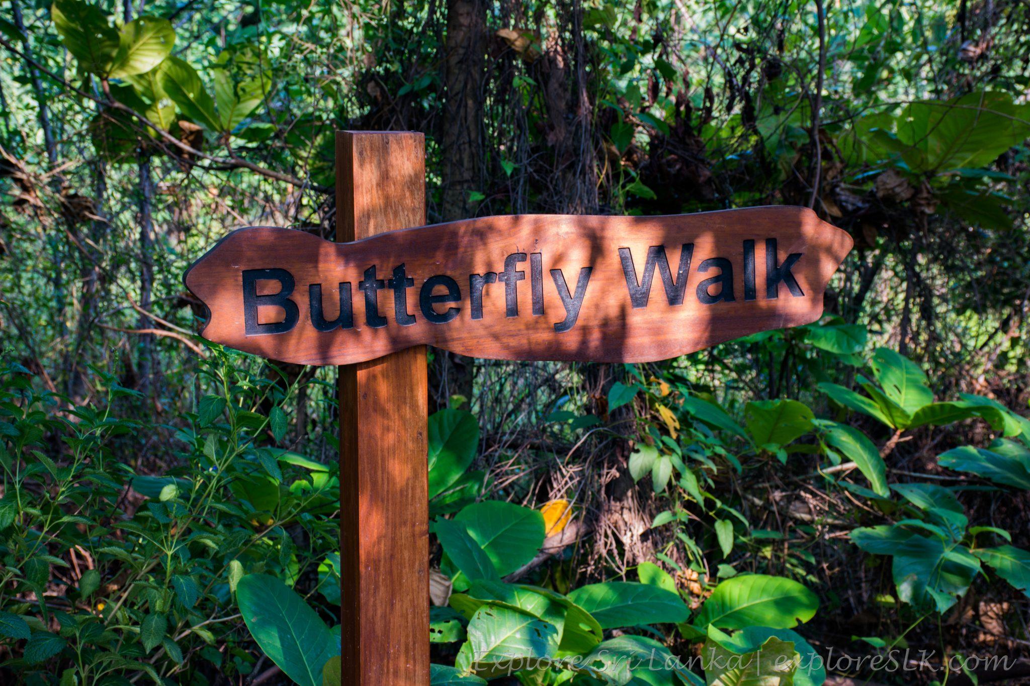 Butterfly Walk - Beddagana Park