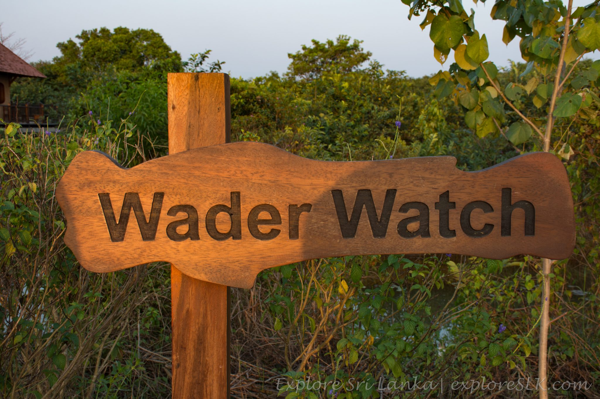 Wader watch - sign board