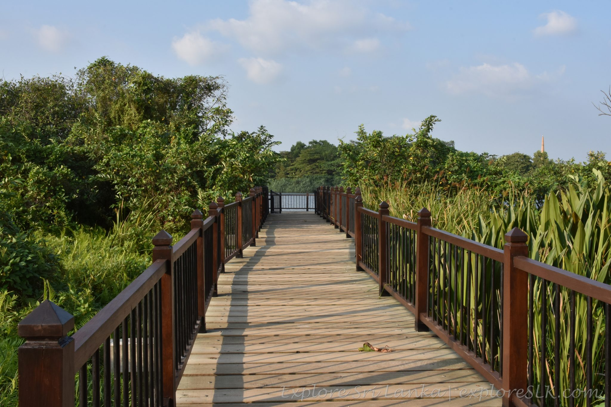 Path to the floating deck