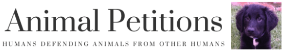 AnimalPetitions.org