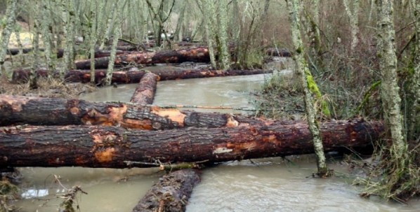 Channel logs, high water