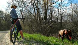 Biking at Island Lake Recreation Area with dog
