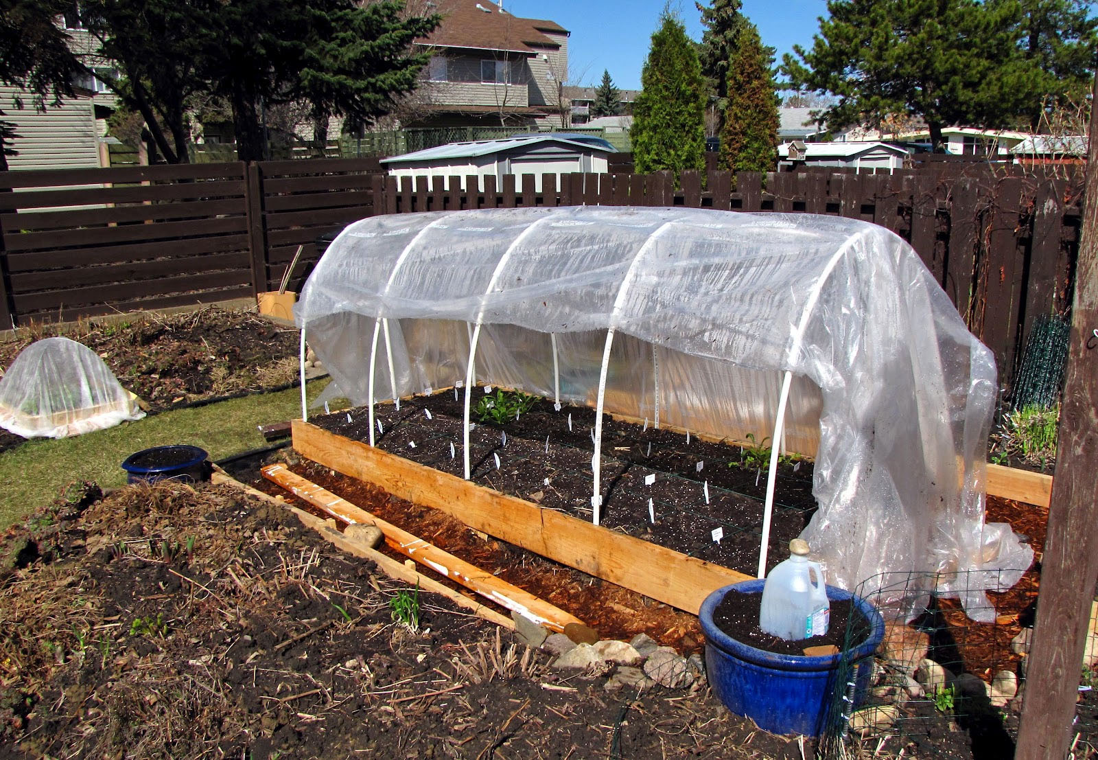 Gopher Squirrel Hoop House Garden Protection