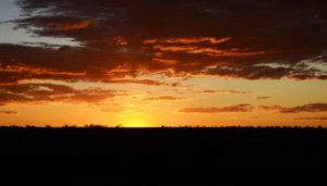 Longreach sunset