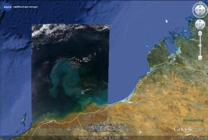 NASA image of the bloom plume off Broome