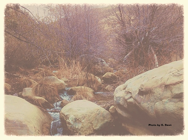 "Click ""display images"" to see this Photo by Garrett Daun, in the wilderness north of Ojai, CA."