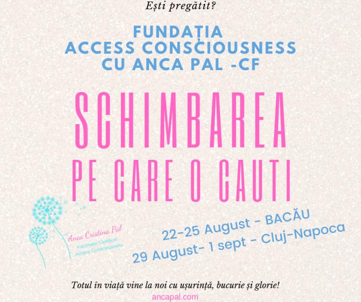 banner Fundatia Access cu Anca Pal