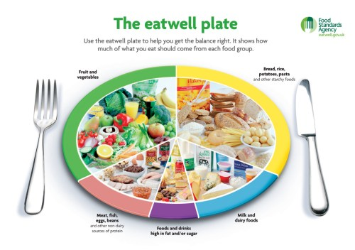 A plate that shows portions of food you should eat from each food group