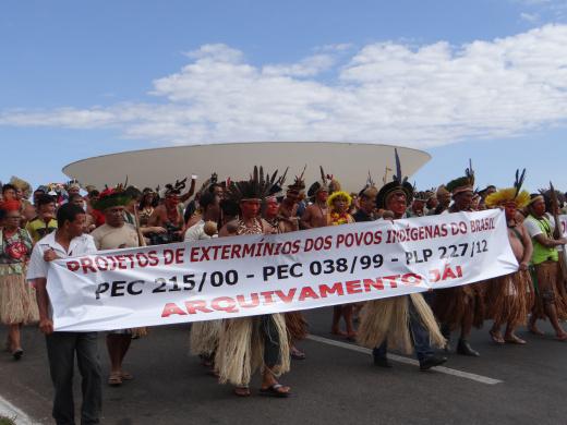 Mobilização nacional em defesa da Carta Magna, dos Direitos Indígenas e da mãe Natureza
