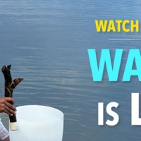 Watch the Film Water is Life!