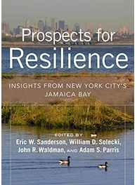 Book Release: Prospects for Resilience. A chapter was co-authored by Dr. Franco Monsalto, eDesign Dynamics Principal Engineer
