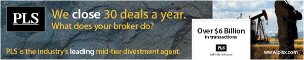 PLS - We Close 30 Deals a Year
