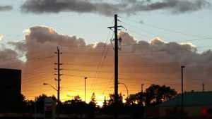 Sunrise behind trees and hydro poles