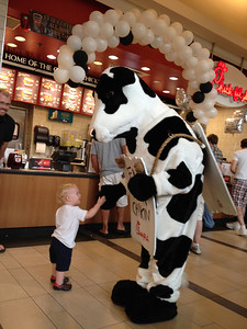 Share this & Moo! (or Last Minute Cow Costumes on a Budget of Zero Dollars ...