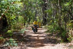 A short ride on the Munda Biddi trail