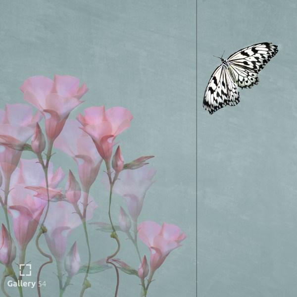 Michaela Kindle - Almost - New Moments