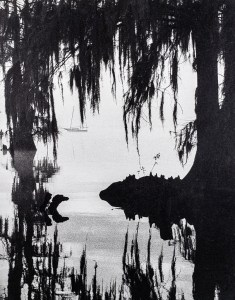 """""""Spanish Moss Mooring"""" © WJ Eastman. Approx. 8 x 10"""" b&w handcrafted alternative process photograph (silver emulsion print from paper negative). Signed, original, editioned print offered by GALLERY5X7."""