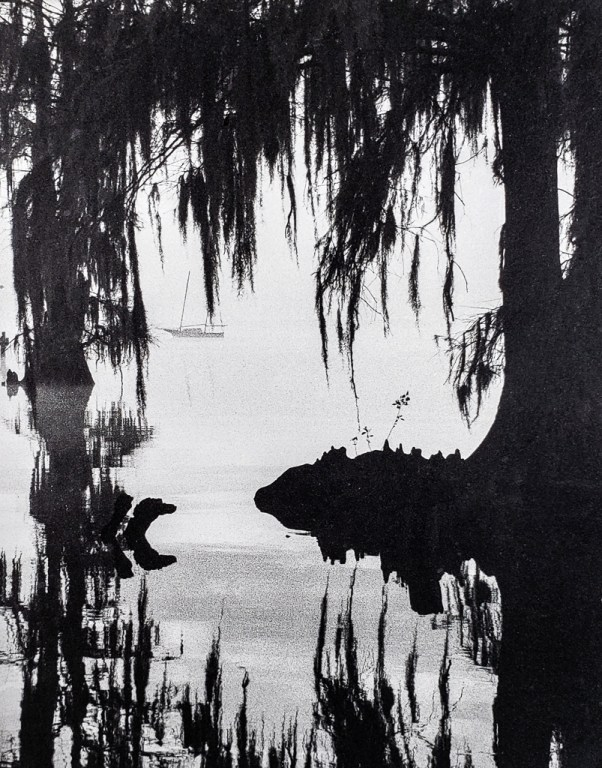 Sailboat moored on the Pamlico River near Washington NC framed by bald cypress and spanish moss. B&W handcrafted alternative process photograph (original silver emulsion print from paper negative). © WJ Eastman Offered by GALLERY5X7