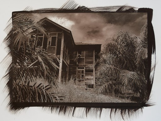 """""""House in Haunted Grove"""" © Richard Kynast. """"The house is guarded by monkeys."""" Approx 17x25cm / 6.5x10"""" on 11x14"""" Bergger COT320. Handcrafted alternative process photograph (Kallitype silver solution from a digital negative). Print is signed, offered by GALLERY5X7 at $250."""