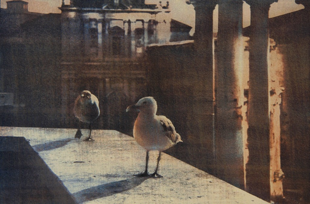 """""""The Owners Of The City"""" © Anna Melnikova. Rome, Italy. Approx. 7x11"""" (18.5x27.5cm) handcrafted alternative process photograph (gum bichromate print from a single negative, four natural-pigment color layers on Lana watercolor paper). GALLERY5X7 offers this original, signed print at $500."""