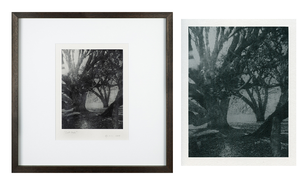 """""""Cork Oaks 3"""" © Mat Hughes. Mt. Beckworth, Victoria. Approx. 6.5x8.5"""" (16.5x21.5cm) handcrafted silver gelatin tree bark still-life study from scanned large format 4x5 negative. Printed on fibre paper and bonded on 16x16"""" (40.5x40.5cm) Forex foamboard ready for framing. Edition of 4 unique signed prints. Offered by GALLERY5X7 at $250."""