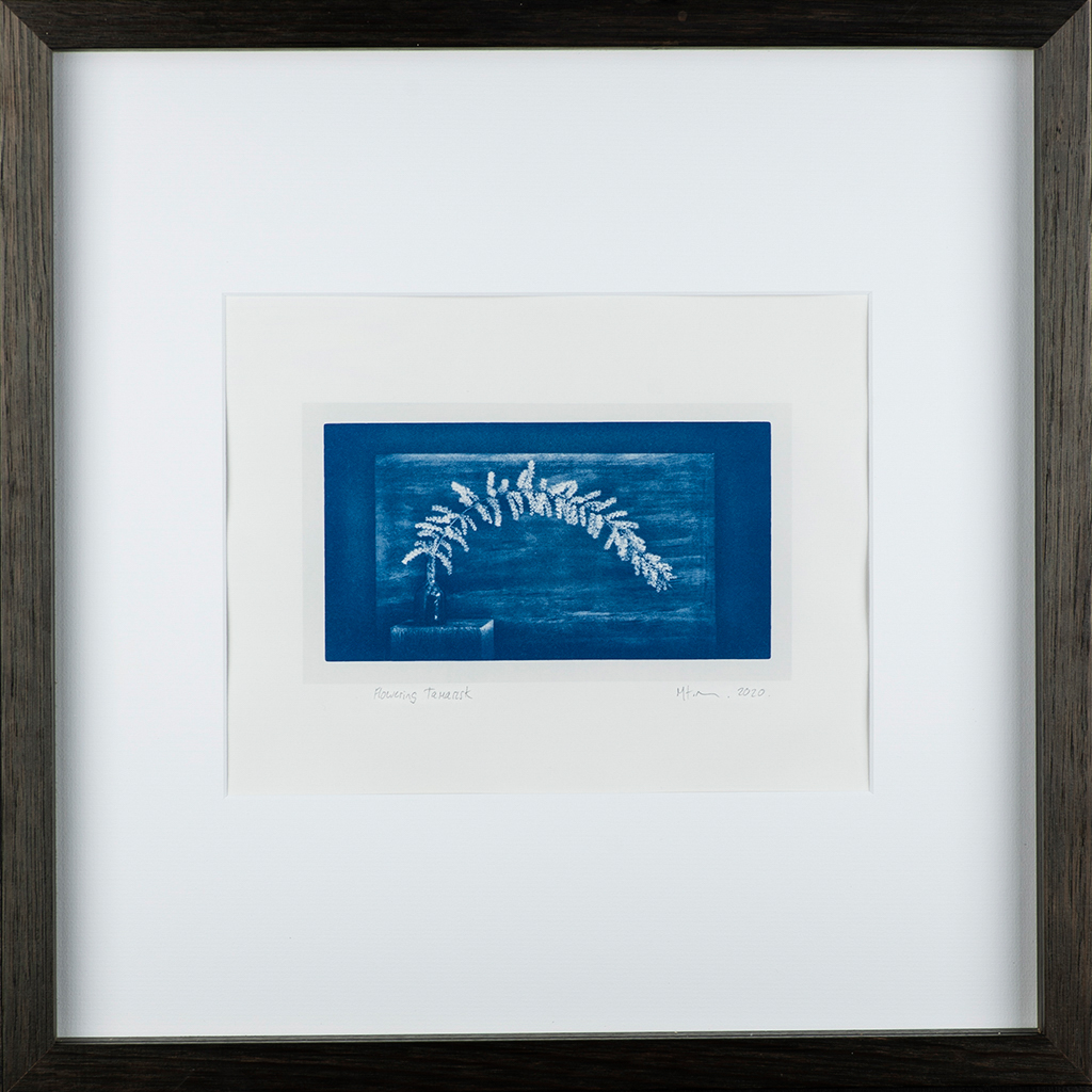 """""""Flowering Tamarisk 2"""" © Mat Hughes. Approx. 4.5x7.9"""" (11.5x20cm) handcrafted cyanotype still-life study from scanned large format 4x5 negative. Printed on watercolour paper and bonded on 16x16"""" (40.5x40.5cm) Forex foamboard ready for framing. Edition of 4 unique signed prints. Offered by GALLERY5X7 at $250."""