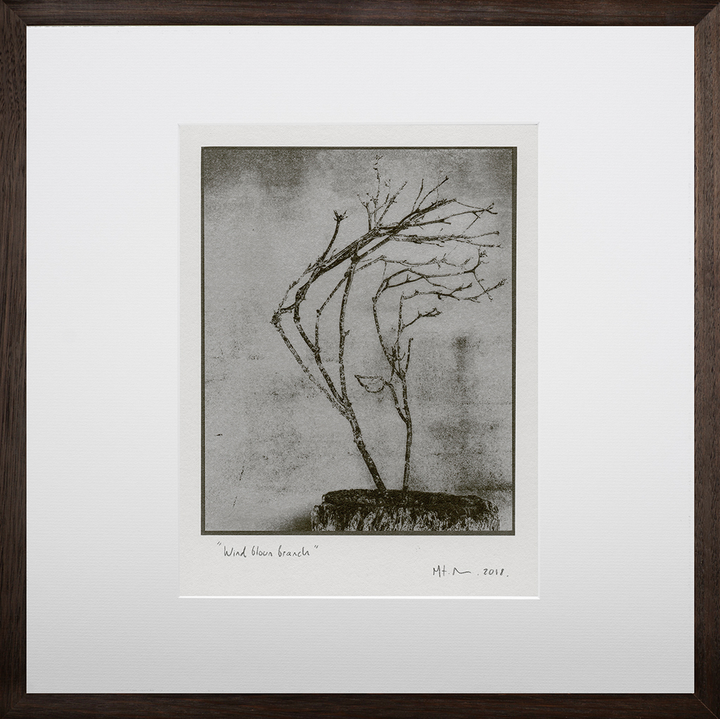 """""""Windblown Branch 2"""" © Mat Hughes. Found, Little Desert National Park, Victoria. Approx. 6.5x8.5"""" (16.5x21.5cm) handcrafted silver gelatin tree bark still-life study from scanned large format 4x5 negative. Printed on fibre paper and bonded on 16x16"""" (40.5x40.5cm) Forex foamboard ready for framing. Edition of 3 (last print!) unique signed prints. Offered by GALLERY5X7 at $250."""