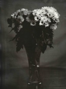 """Flowers"" © Barry Mayfield. Approx. 9X11.5"" (23X28.5cm) handcrafted alternative process photograph (silver gelatin lith print). GALLERY5X7 offers this signed, original print at $250."