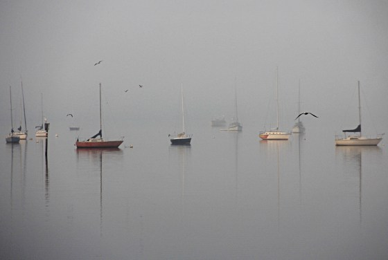 """Sid Earley """"Boats in the Mist"""""""