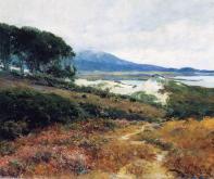 California Poppy Field, 1918-20