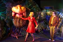 Little Shop Of Horrors 2016 Hayes Theatre