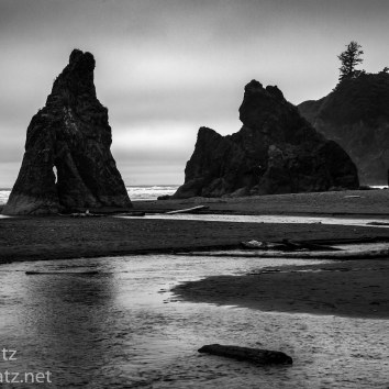 Creek to Second Beach Olympic National Park