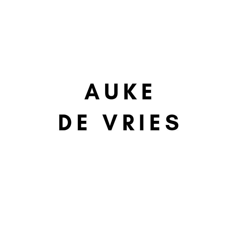 Künstler: Auke de Vries