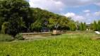 Nagai Park w/ Ka Wi & Dayat (7 Augustus 2016)(4)