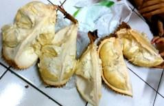 Durian (18 April 2016)
