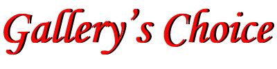 Gallery's Choice Logo